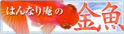 金魚のご購入,通信販売,通販